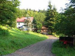 Bauernhof umgeben von Wald